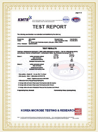 KOREAN TEST REPORT